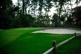 hyde park golf club in jacksonville florida usa golf advisor