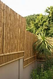 gartengestaltung sichtschutz garten sichtschutz bambus garten gestalten ideen