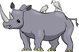 cartoon rhino pictures free download clip art free clip art