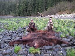 Bears Montana Hunting And Fishing - boddington hunting the world s big bears petersen s hunting