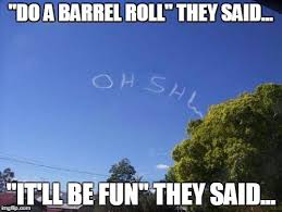 Do A Barrel Roll Meme - image tagged in barrel roll imgflip