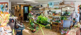 florist shop kingston florist chartreuse flower works