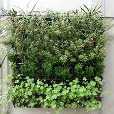 aliexpress com buy 64 pocket hanging vertical garden planter
