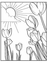 free printable spring coloring pages children books
