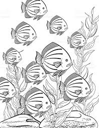 underwater fish coloring book stock vector