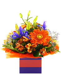 cheap flowers free delivery cheap flowers australia wide free delivery flowersales