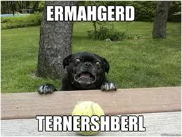 Cute Dog Memes - cute dog meme archives comediva
