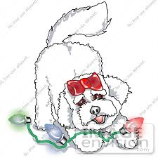 bichon frise cartoon cartoon clip art graphic of a bichon frise dog playing with