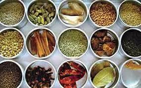 de cuisine indienne la cuisine du rajasthan inde