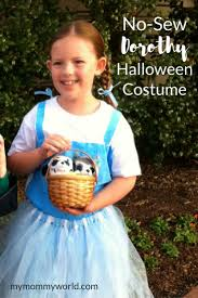 wizard of oz costume homemade the 25 best wizard of oz dorothy costume ideas on pinterest