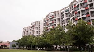 2 u0026 3 bhk flats in phursungi pune park infinia hurry