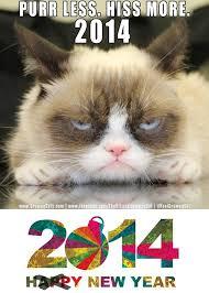 Grumpy Cat New Years Meme - unhappy new year funnies pinterest grumpy cat and humor