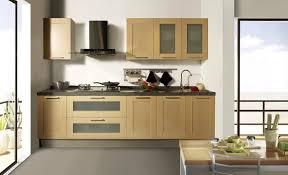 kitchen unit ideas lovely single kitchen cabinet ideas en cabinet designs one wall
