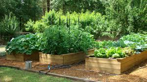 farm to preschool natural learning initiative