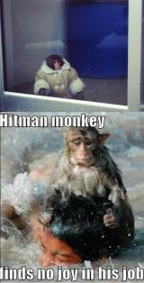 Funny Monkey Meme - hitman ikea monkey know your meme