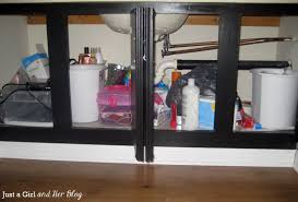 Bathroom Cabinet Organizer 0 Bathroom Cabinet Organization