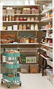 Kitchen Storage Shelves by Best 10 Ikea Pantry Ideas On Pinterest Ikea Hack Kitchen Ikea