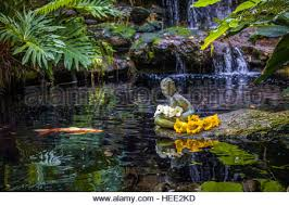Selby Botanical Garden Statue In Koi Pond In Selby Botanical Gardens In Sarasota
