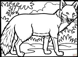red fox coloring page funycoloring
