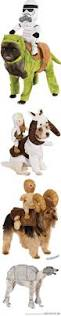 Funny Halloween Animal Costumes by