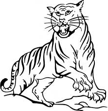tiger coloring pages wild animals tiger delicate coloring pages