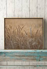 farmhouse kitchen decor wheat field print rustic wall decor