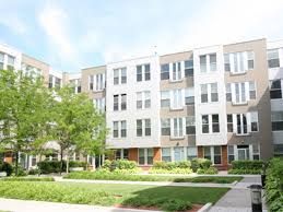 apartment building design 15 pet friendly apartment complexes in greater boston