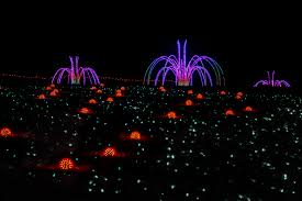 Washington Dc Zoo Lights by December 2016 Norm Gresley