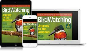 Backyard Birding Magazine Subscriptions And Digital Editions Birdwatching