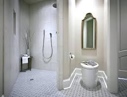 Walk In Shower Without Door Doorless Walk In Shower Shower Designs For Small Bathrooms Glass
