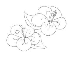 fancy hibiscus flower coloring page color luna