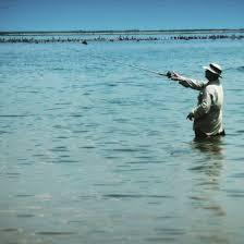 what clean water in breton sound looks like louisiana fishing blog