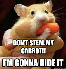 Melting Meme - unique melting meme 30 most funny hamster meme pictures and photos