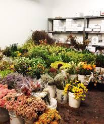 Wholesale Flowers Diy Succulent Wedding Centerpieces Archives Design Intervention