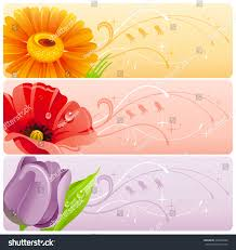 summer flowers banner set natural background stock vector