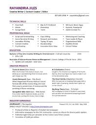 free professional resume writing resume template and