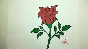 learn how to draw pretty rose in bloom icanhazdraw youtube