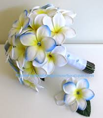 wedding flowers hawaii frangipani wedding flowers frangipani plumeria theme