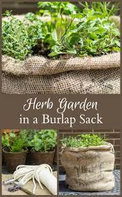 523 best garden herbs images on pinterest gardening indoor