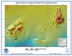 Flower Area - flower garden banks national marine sanctuary maps