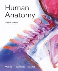 Human Anatomy Physiology Laboratory Manual Pdf Amazon Com Human Anatomy Laboratory Manual With Cat Dissections