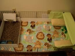 Guinea Pig Cages Walmart How To Build A C U0026c Guinea Pig Cage Pethelpful