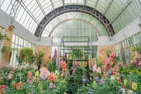 spring in wintergardens auckland domain loved and wanderlust