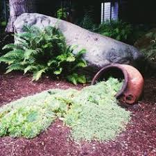 Ideas 4 You Front Lawn Landscaping Ideas To Hide Septic Lids The 25 Best Septic Tank Design Ideas On Pinterest Septic Tank