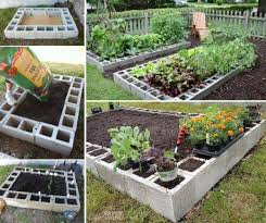 Build A Platform Bed With Cinder Blocks by Best 20 Raised Garden Beds Cinder Blocks Ideas On Pinterest Bed