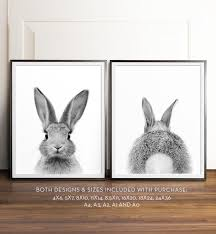rabbit prints rabbit print bunny black and white photography
