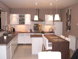 peinture pour la cuisine quelle couleur de mur pour une cuisine grise trendy charmant con