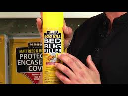 Harris Bed Bug Killer Powder How To Eliminate Bed Bugs Pf Harris
