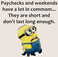Minion Meme Images - top 40 funniest minions memes quotes and humor