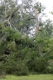nearly entire suwannee valley without power news